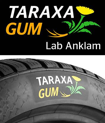 taraxagum-anklam-logo-mit-850